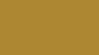 The Vegas Hooligans